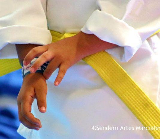 Cinco Razones para que Niñas y Niños entrenen Artes Marciales