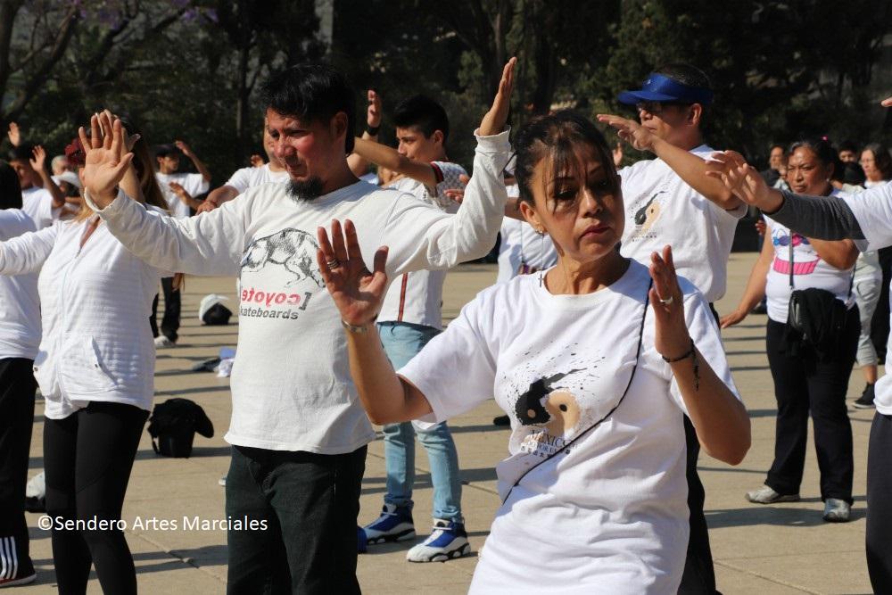 Las artes marciales son una alternativa contra el estrés, la ansiedad, el dolor en las articulaciones y mejoría de la memoria, donde el taichí es el más recomendable para todas las personas, en especial para adultos mayores, destacó un artículo de la Facultad de Psicología, Iztacala de la Universidad Nacional Autónoma de México (UNAM).