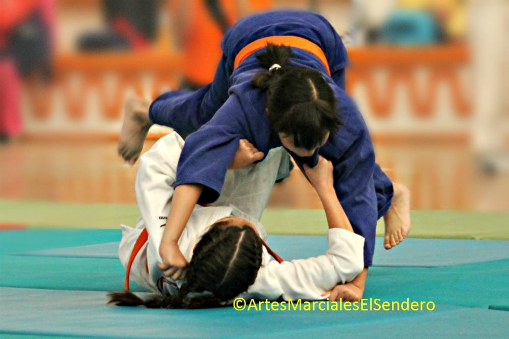 La Universidad Autónoma de Nuevo León (UANL) se coronó campeona en la especialidad de judo en la XXI Universiada Nacional 2017, tras conquistar un total de 323 puntos, mientras que la Universidad Autónima de Tlaxcala (UATx).