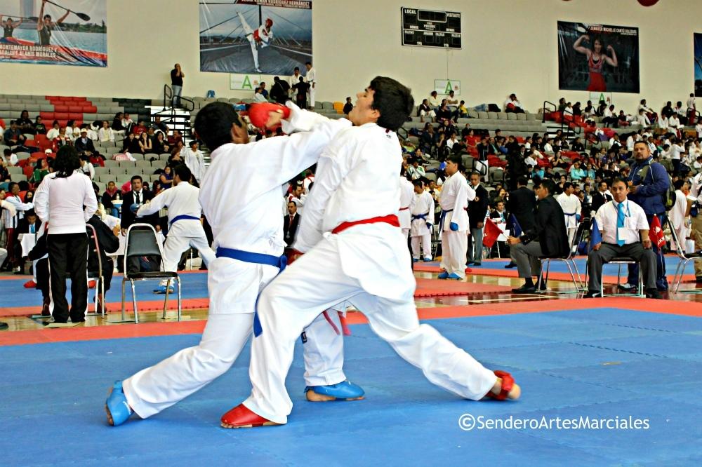 La selección de karate de Nuevo León se llevó el primer lugar de la Olimpiada Nacional (ON), donde se proclamó campeona al quedarse con 15 medallas; en tanto que Jalisco hizo lo propio en el Nacional Juvenil (NJ), donde su equipo conquistó 47 preseas.