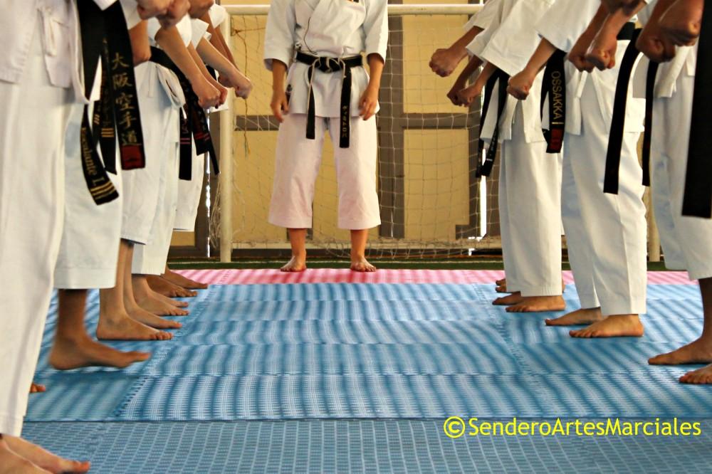 Con base a estudios y métodos científicos para enseñar y aplicar técnicas de entrenamiento deportivo en disciplinas marciales de combate, se realizará una serie de 'Clínicas de Actualización de Entrenamiento Deportivo en Karate Do'.