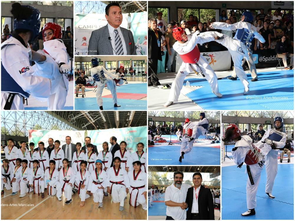 Una gran experiencia vivieron practicantes de taekwondo de más de una veintena de estados del país, al asistir a los torneos Selectivo Nacional Infantil, Preselectivo Nacional de Adultos y Campeonato Nacional Abierto Todos los Grados