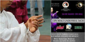 El Aquí y el Ahora se vivirá en la 1ª Copa México Unido por el Taichí.