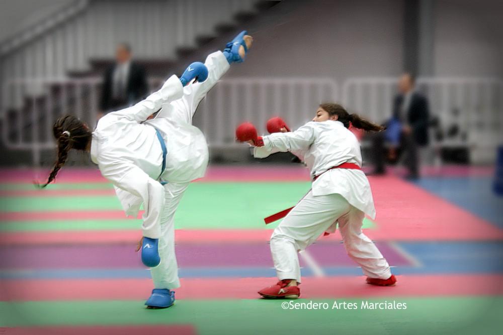 Guadalupe Quintal Catzin, Xunashi Caballero Santiago y Jesús Rodríguez serán los únicos nacionales que estarán presentes en el Karate 1-Premier League Estambul 2018.
