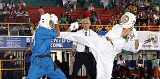 Kudo es un sistema japonés de combate de pie y sobre el piso, en el cual se aplican combinaciones de técnicas de defensa y golpeo de manos y pies, proyecciones, derribes y técnicas desumisión, por lo cual ha sido catalogado como las artes marciales mixtas del oriente.