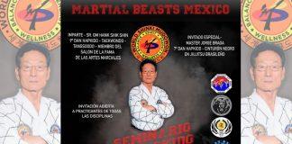 Gran Master (GM) Hank Shik Shin, uno de los grandes exponentes de Hapkido, considerado leyenda viviente del arte marcial a nivel mundial ofrecerá un seminario en la Ciudad de México (CDMX).