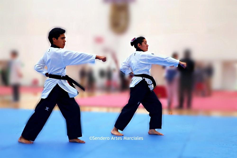 La competencia de poomsae por parejas de taekwondo logró ser rescatada junto con catorce pruebas deportivas más, las cuales habían sido eliminadas del programa de los próximos Juegos Centroamericanos y del Caribe Barranquilla 2018.