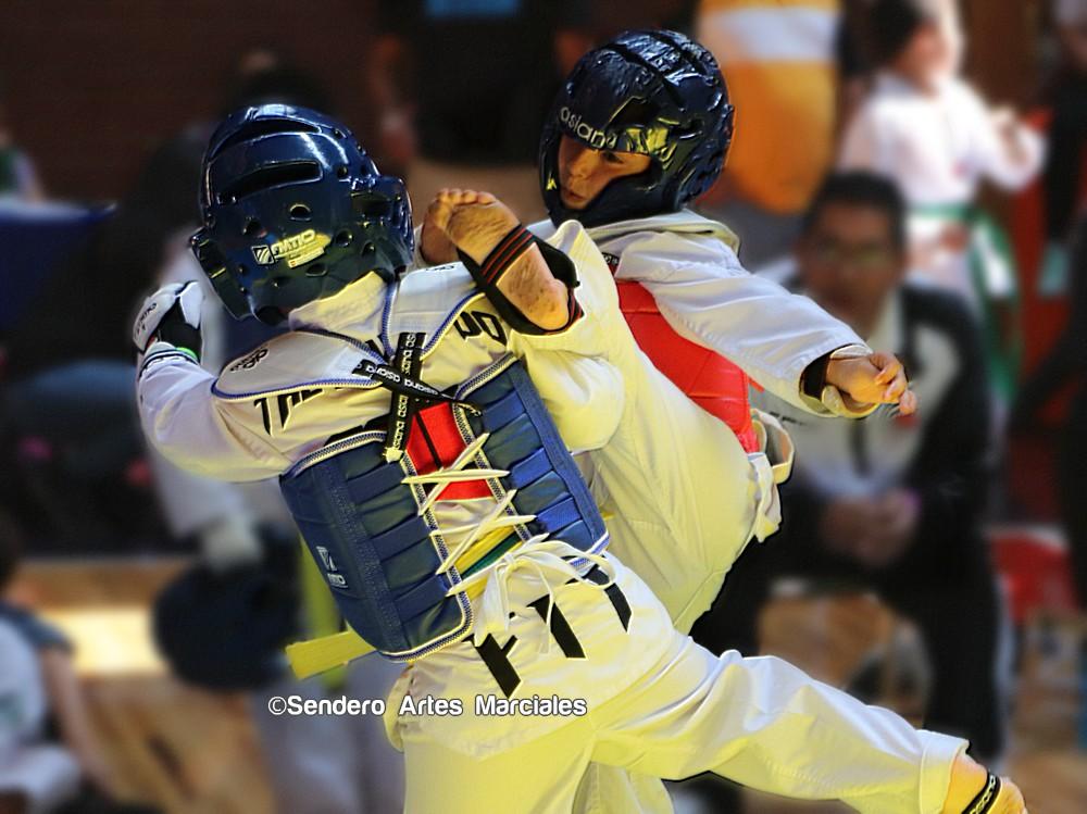 A fin de difundir el taekwondo a través de la asistencia social para niños, jóvenes y adultos mayores, el otorgamiento de becas, compartir experiencias y conocimientos, torneos a donación y otras actividades, iniciaron los trabajos para formalizar la 'Fundación Puertas Abiertas'