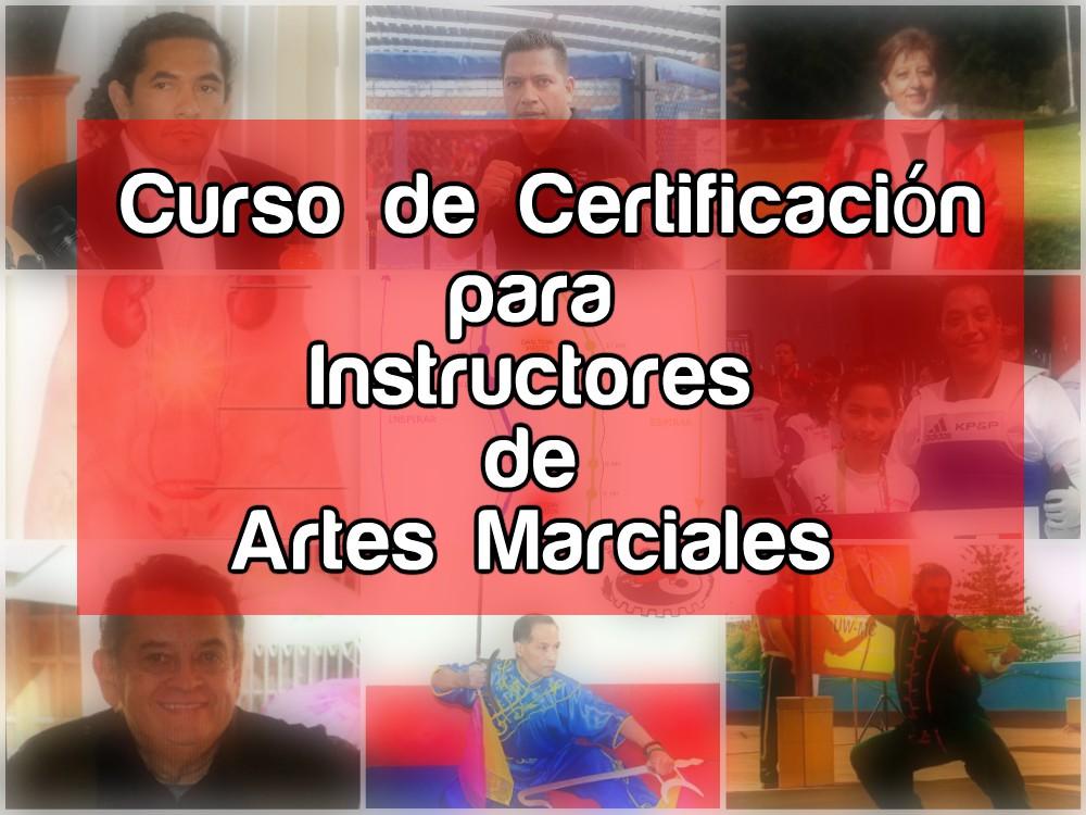 Instructores y maestros de diferentes sistemas marciales tendrán oportunidad de ampliar sus conocimientos de técnicas diferentes a las suyas, así como de diferentes aspectos en general.