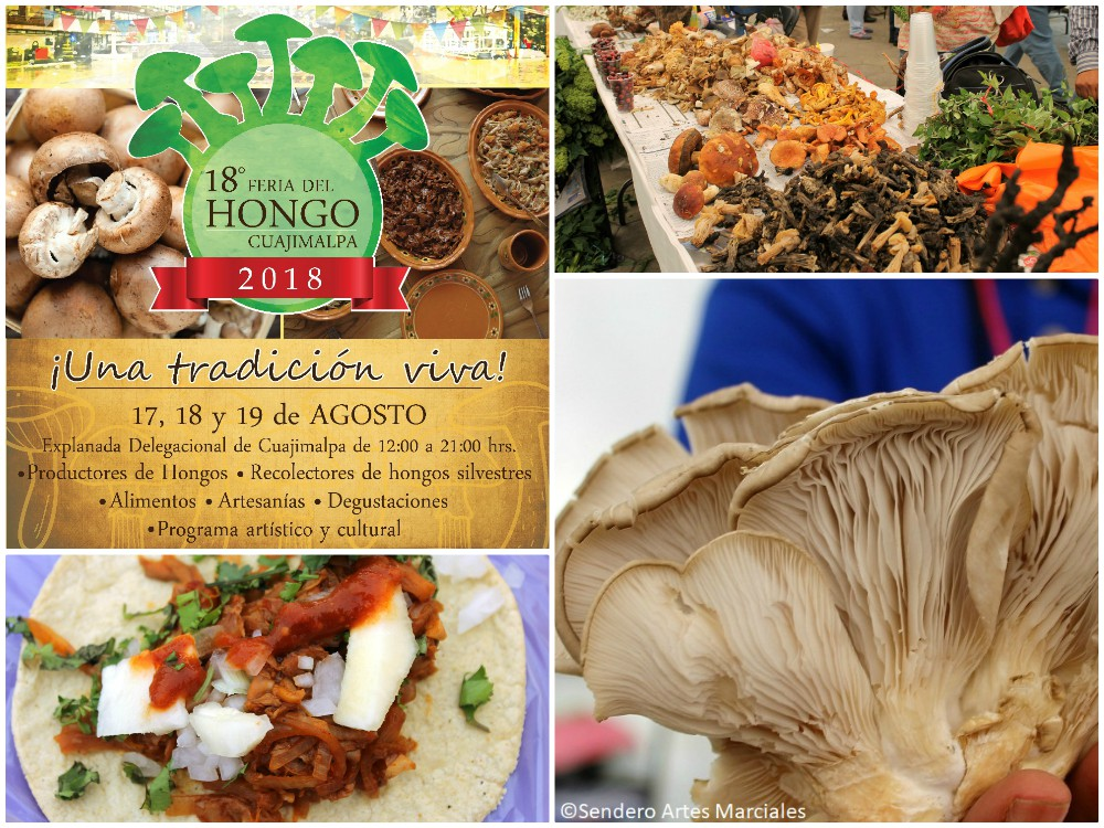 Todo se encuentra listo para que se lleve a cabo la 18ª Feria del Hongo de Cuajimalpa CDMX, donde artistas marciales, atletas y personas en general podrán conocer y disfrutar diferentes opciones alimenticias de nutrición y para mantenerse en forma.