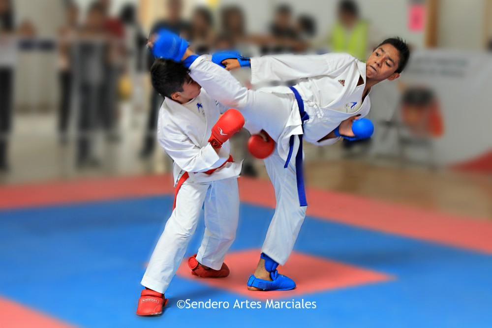 La AKCDMX anunció la próxima realización del 2º Selectivo-Juegos Deportivos Infantiles y Juveniles de la CDMX, donde podrán asistir practicantes de todas las categorías, grados y edades.