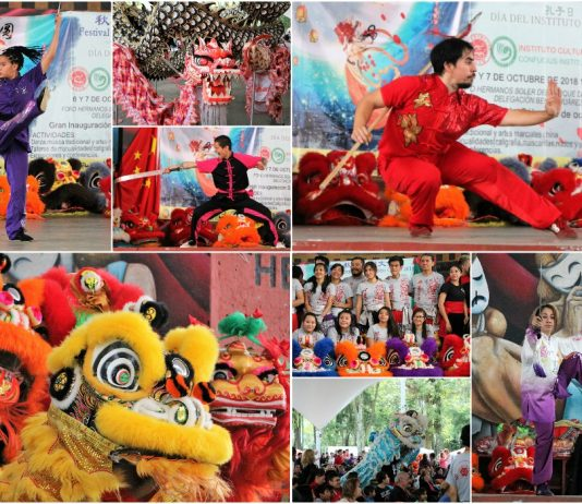 Toda una fiesta de artes marciales, danza de leones y dragones, talleres, música y diferentes actividades relacionadas con la cultura china, fueron parte del Festival Cultural Chino Otoño 2018, realizado en el Parque de los Venados de la CDMX.