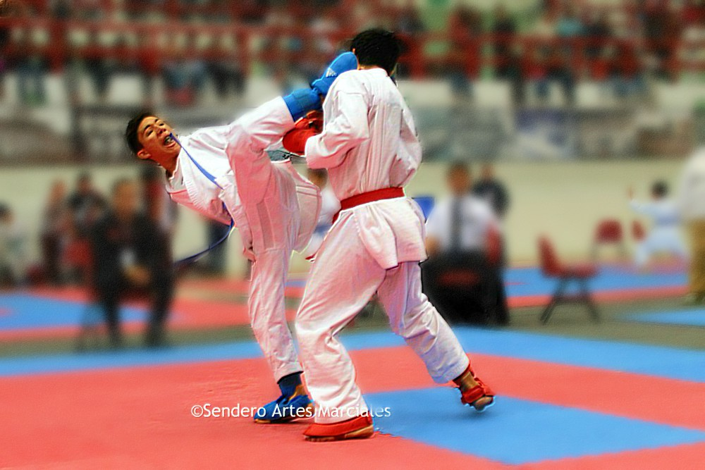 México logró destacar en el Karate1 Youth League Cancún 2018, donde logró colocarse en la segunda posición del medallero general, al obtener un total de 29 medallas.México logró destacar en el Karate1 Youth League Cancún 2018, donde logró colocarse en la segunda posición del medallero general, al obtener un total de 29 medallas.