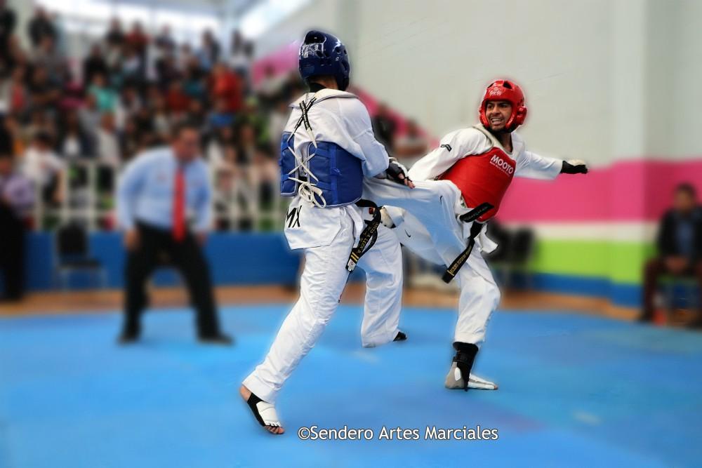 A fin de dar oportunidad a practicantes de taekwondo adultos para ser parte de la Selección de la Ciudad de México (CDMX), en enero se llevará a cabo el torneo Selectivo de Cintas Negras 2019, el cual será abierto a integrantes de escuelas, clubes y equipos del arte marcial.