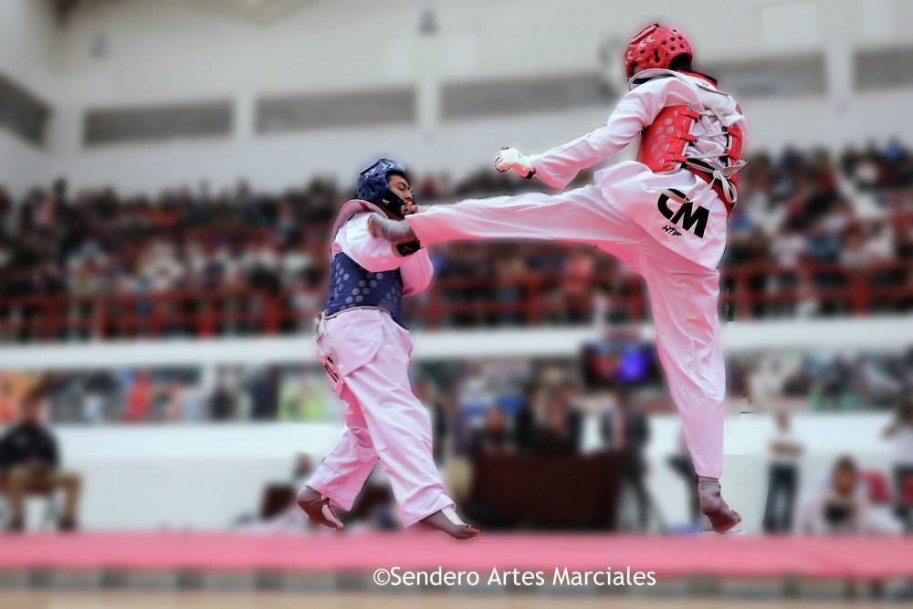 El año que está por terminar fue el inicio de grandes retos para la Asociación Capitalina de Taekwondo (ACTKD), la cual tuvo un cambio de dirigencia que implicó la reestructuración en diferentes campos y donde, a pesar de los augurios, sus integrantes lograron salir adelante.