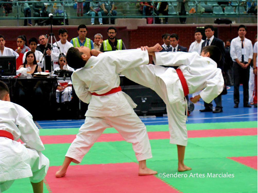 La Federación Mexicana de Karate y Artes Marciales Afines, A.C. (FEMEKA), tendrá un intenso 2019, año en el cual se contemplan algunas competencias de vital importancia para los atletas