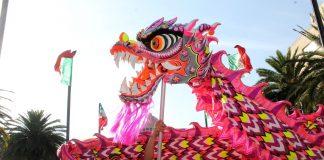 La alegría y energía de las artes marciales, dragones y leones chinos llegarán al Museo Nacional de las Culturas del Mundo (MNCM), en la Ciudad de México (CDMX), sede donde se festejará y dará la bienvenida al Año correspondiente al Cerdo o Jabalí de Tierra.