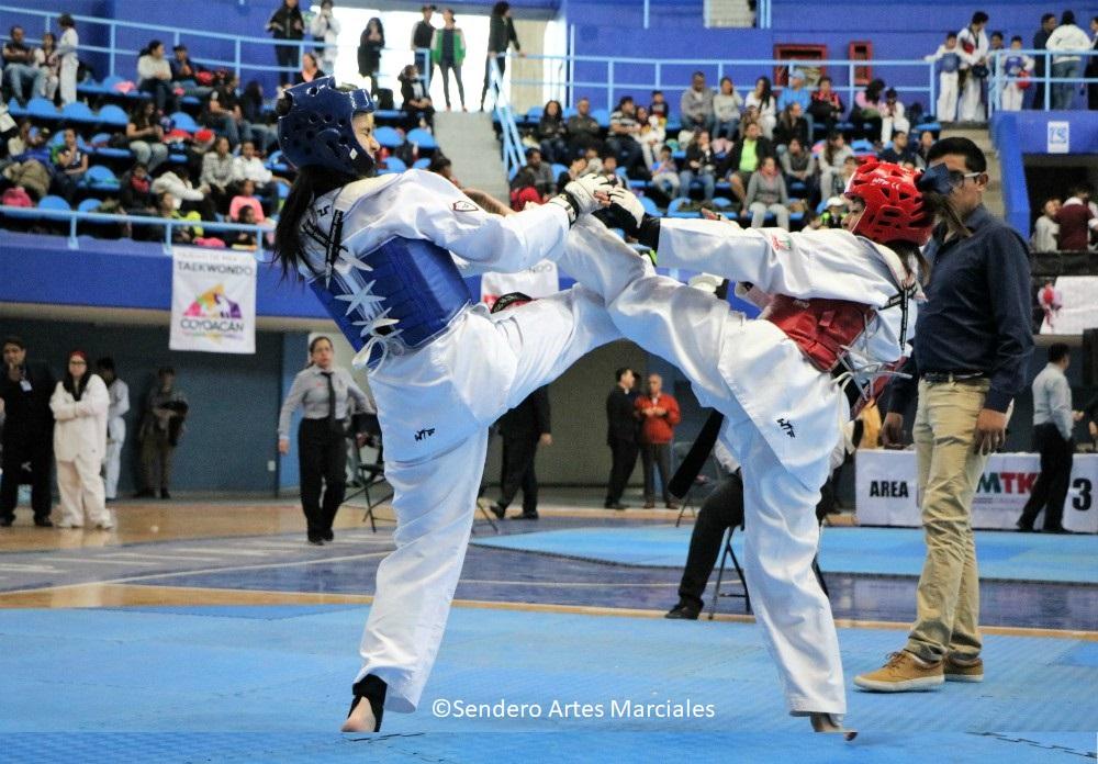 """Los competidores de taekwondo de Alcaldía de Venustiano Carranza ocuparon los primeros sitios de las diferentes categorías de los pasados """"Juegos Deportivos Infantiles, Juveniles y Paralímpicos de Taekwondo de la Ciudad de México 2018-2019"""", donde sus similares de Gustavo A. Madero quedaron en la última posición."""