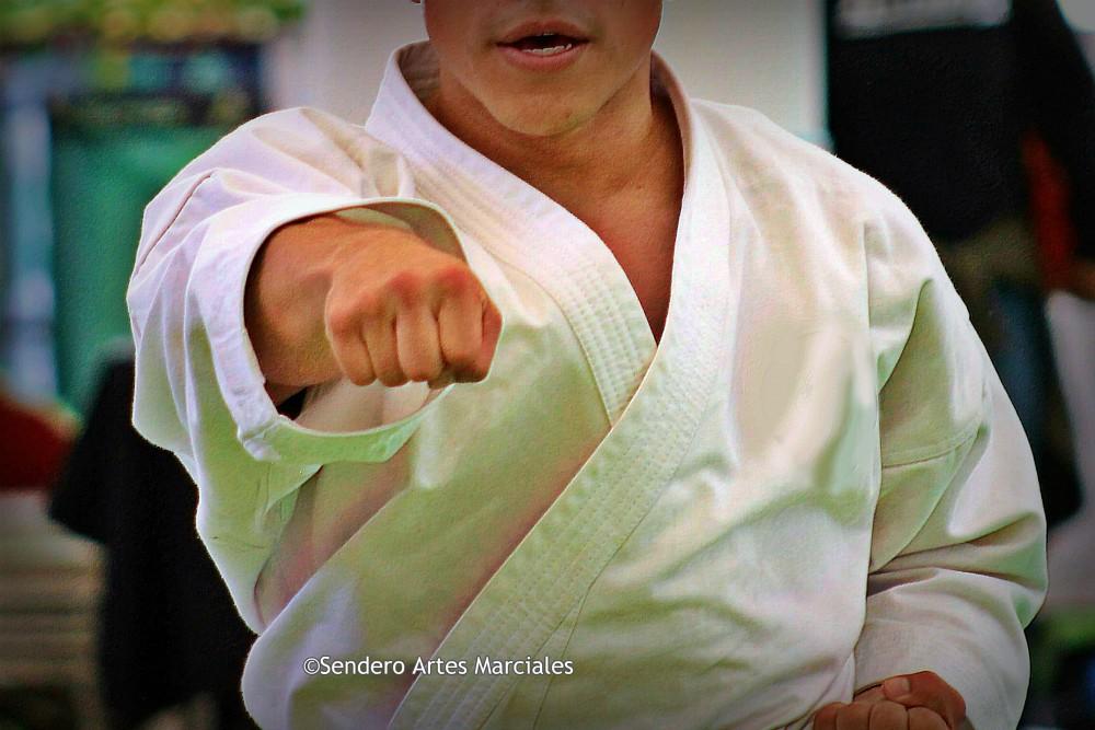 Luego de que se conociera que el karate quedaría fuera de Juegos Olímpicos París 2024, la Federación Mundial de Karate, decidió no cruzarse de brazos y lamentarse, por lo que inició una campaña internacional para mostrar la unidad de la disciplina para solicitar su inclusión a las máximas pruebas deportivas.