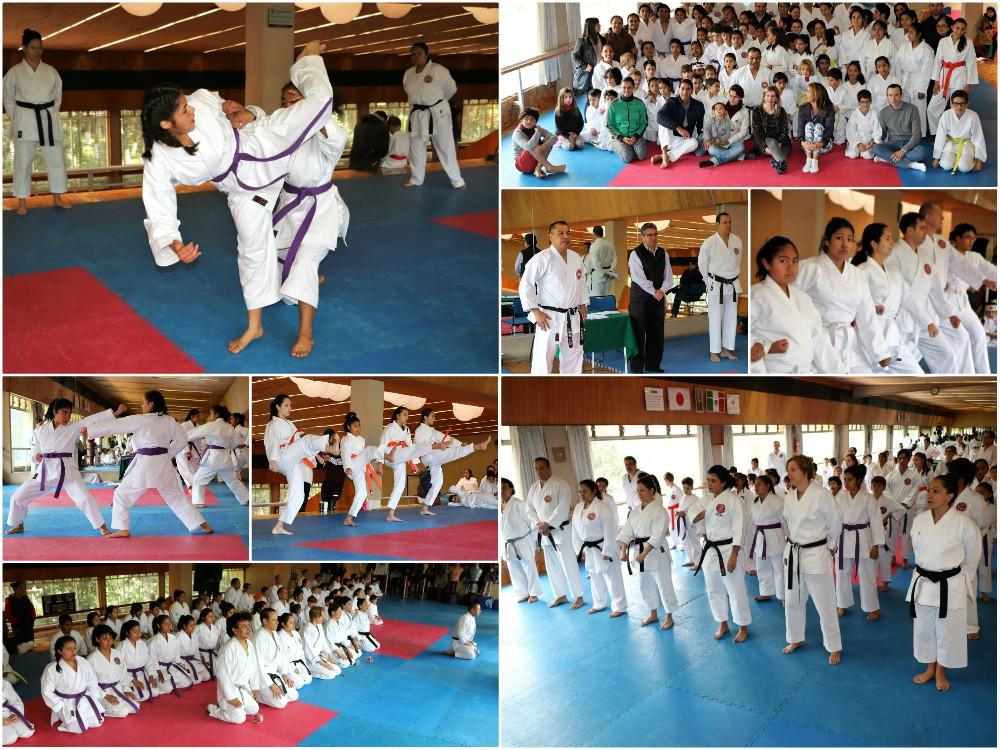 Un paso más en el camino de la Mano Vacía dieron alumnos de diferentes sedes de la Asociación Shotokan Karate Do México, representante en el país de la The World Shotokan Karate Federation (WSKF), al dar muestra de su aprendizaje técnico y habilidades durante su examen de kyu en el Dojo de Club Mundet en la Ciudad de México.