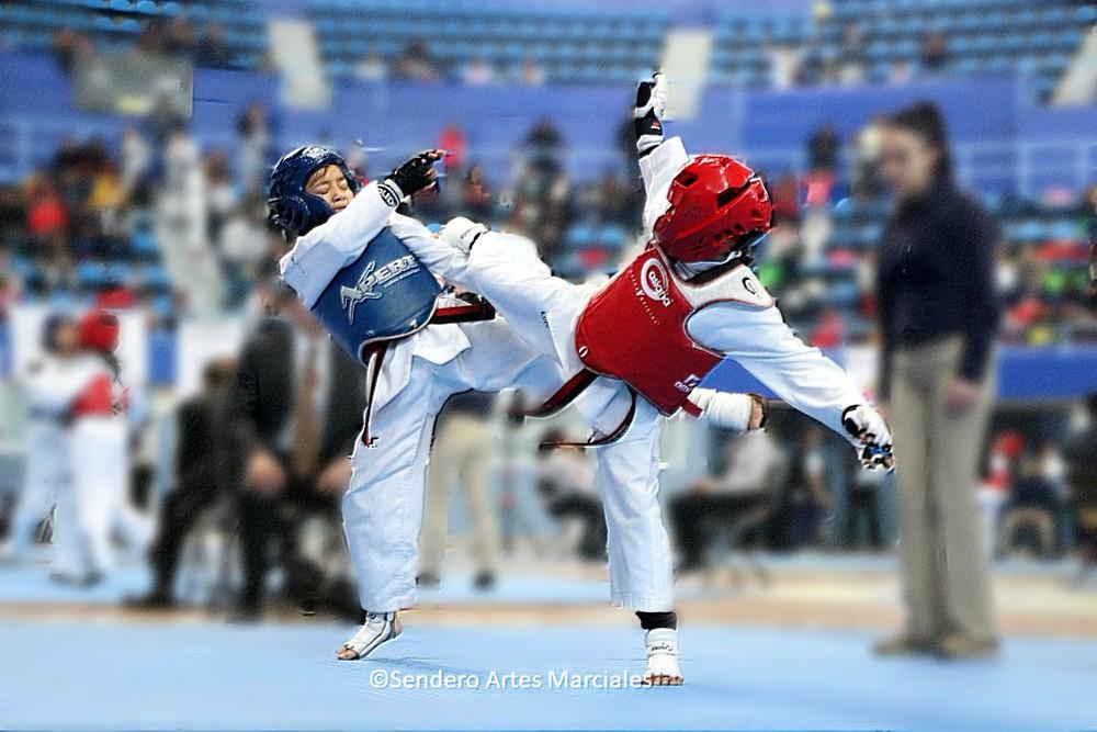 La selección de taekwondo de la Ciudad de México ha subido de nivel para destacar en los próximos torneos regionales rumbo a Olimpiada nacional y Nacional Juvenil, así como para el próximo México Open CDMX.