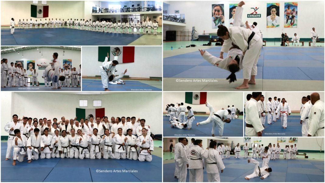 Con una asistencia de cerca de 40 practicantes de judo que aspiran a obtener su Cinta Negra u obtener un grado Dan en este arte marcial, se llevó con éxito la primera Clínica de Grados 2019.