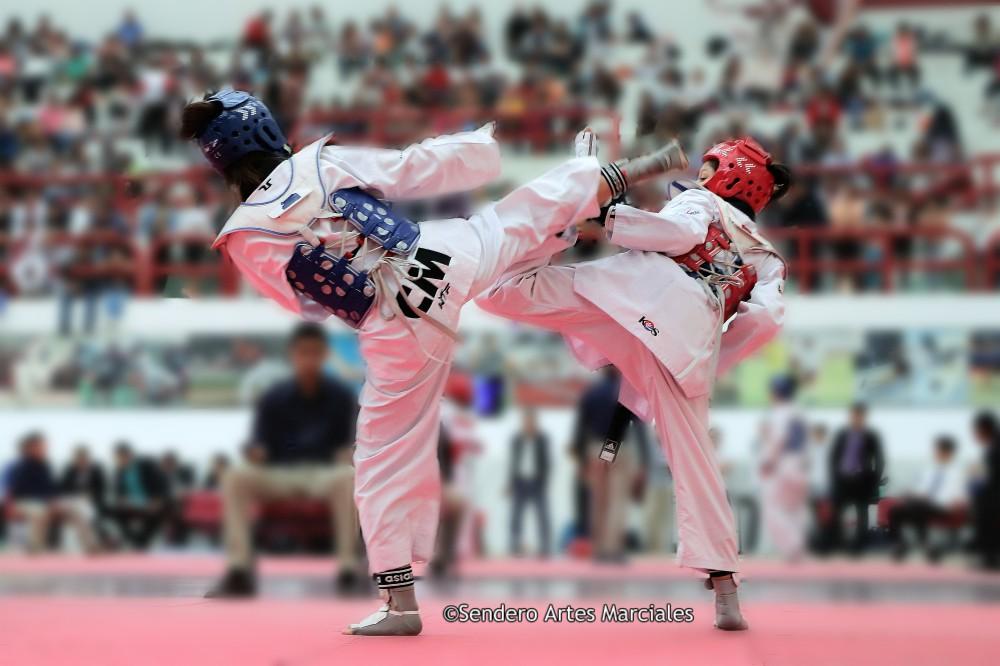El equipo de la Asociación Capitalina de Taekwondo (ACTKD), se encuentra listo, física y mentalmente, para entregarlo todo sobre el tatami en el próximo Torneo Regional, rumbo a Olimpiada Nacional y Nacional Juvenil 2019, que se realizará el próximo fin de semana.
