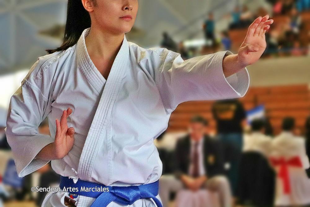 La Federación Panamericana de Karate (PKF, por sus siglas en inglés) dio a conocer la lista de participantes para los Juegos Panamericanos Lima 2019, donde México figura con 11 plazas, en las modalidades de kata y kumite.
