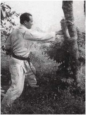 Sosai Mas Oyama, escena de entrenamiento. Foto web.